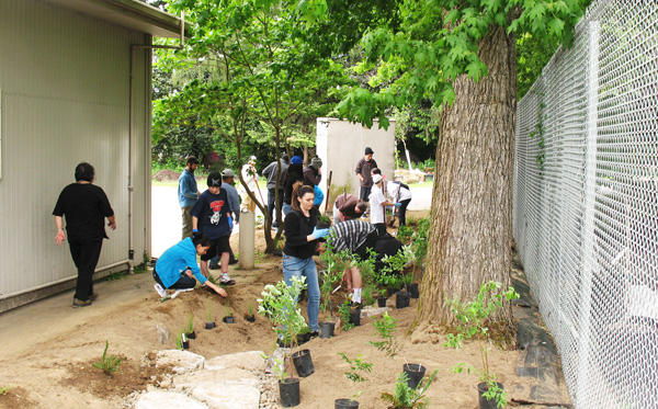 Volunteers planting a rain garden at a PIC grant project site