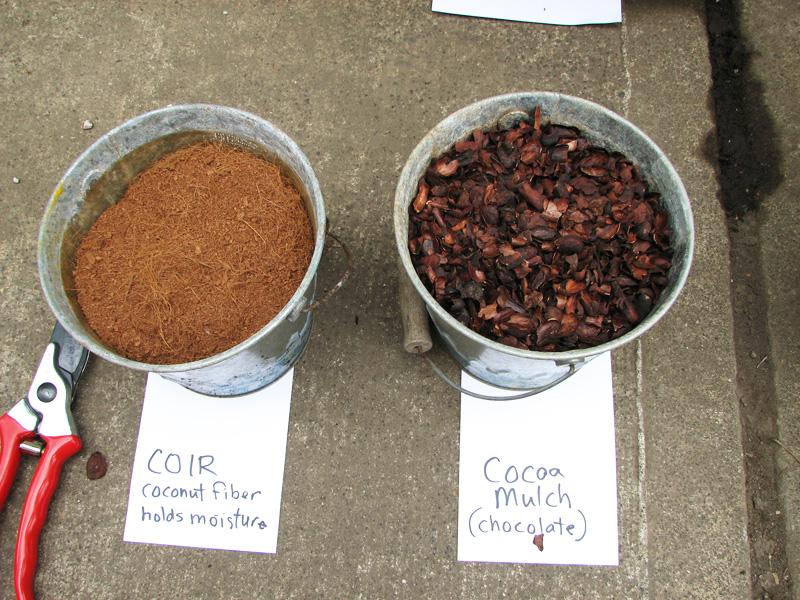 types of organic mulch