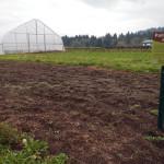 new pollinator habitat area