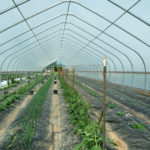 Headwaters Farm Greenhouse