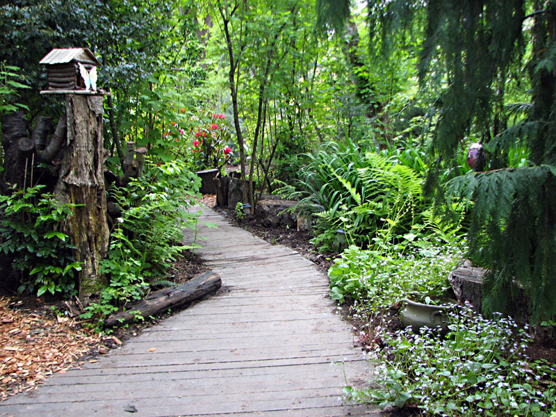 naturescaped yard with path
