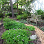 naturescaped yard with path and bench