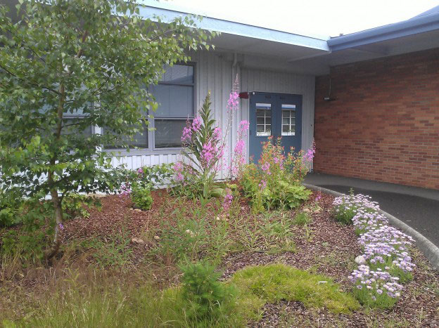 the new butterfly garden