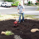 building a rain garden