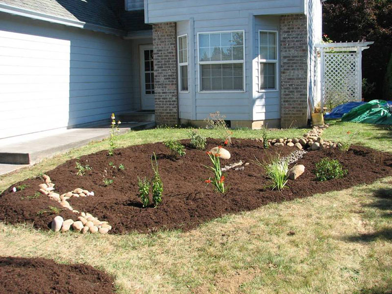 a completed residential rain garden