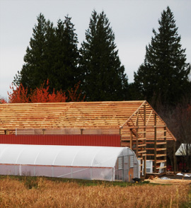 Greenhouse and frame for new bar at Headwaters Farm