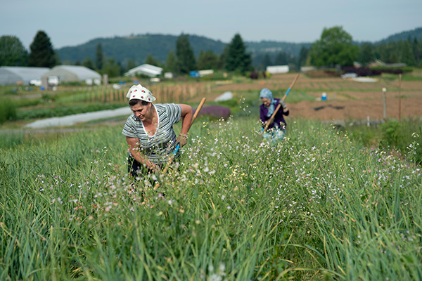 Farmers enrolled in the Headwaters Farm Incubator Program