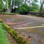 speed bumps to redirect stormwater