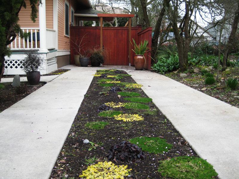 split driveway