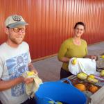 Incubator farmers washing produce outside the Headwaters barn