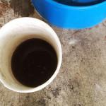 bucket of compost tea