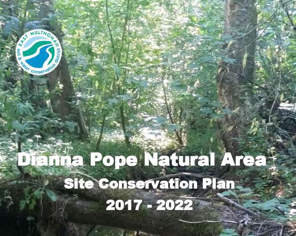 DPNA Plan Cover