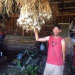 Pete showing off Udan Farm's garlic harvest