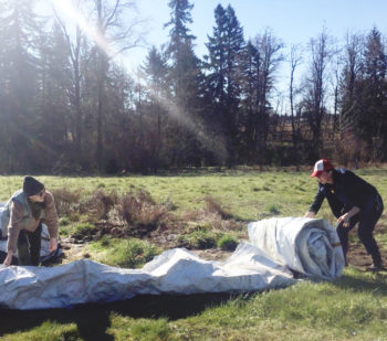 Amica Farm - rolling up tarp