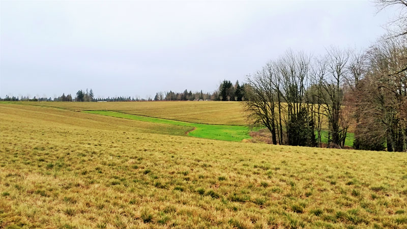learn more about farmland easements