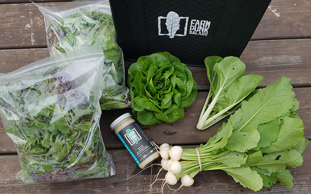 An arrangement of greens and products from Farm Punk Salads