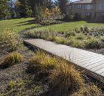 Boardwalk through reconstructed wetland