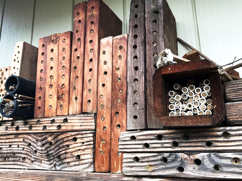 A variety of mason bee shelters
