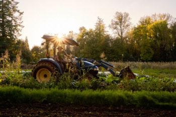 Headwaters Farm graduate lessee doing field work at Mainstem