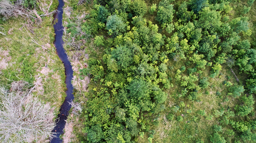 An aerial view of restoration efforts along Johnson Creek on the property