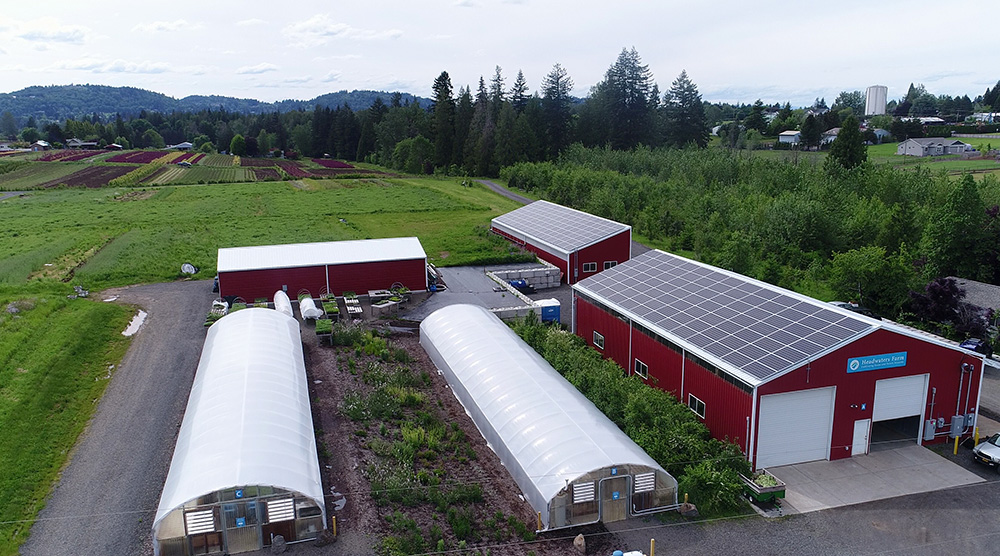 A view of both solar panel installations at Headwaters Farm