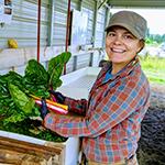 Reiden Gustafson : Little Sun Farm
