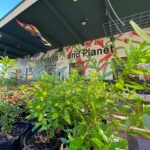 SymbiOp Garden Shop